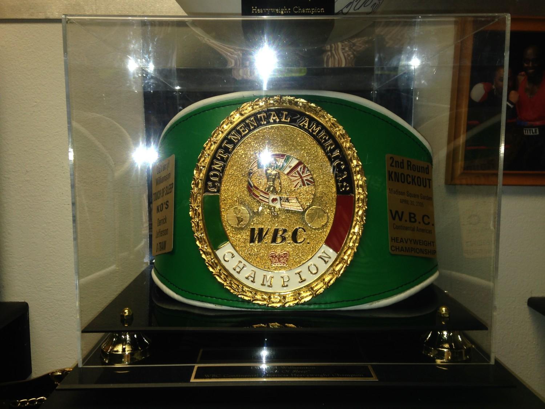WBC-IC